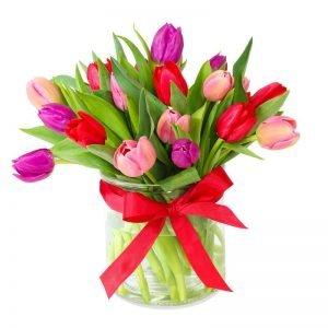 Spring kisses tulip mix
