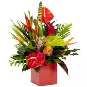 Hot Tropics flowers